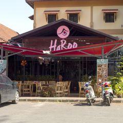 HaRoo User Photo