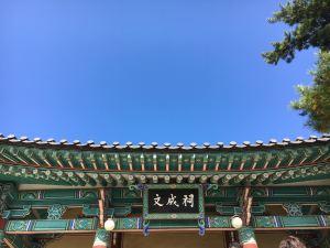 강릉시,추천 트립 모먼트
