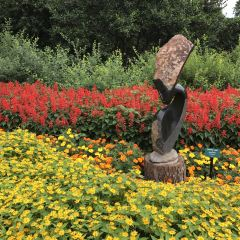 Dallas Arboretum and Botanical Gardens User Photo