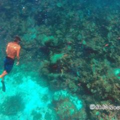 Cancun Underwater Museum User Photo