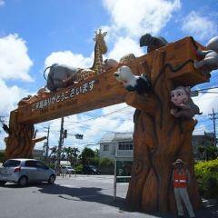 오키나와 코도모노쿠니 여행 사진