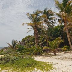 Town of Tulum User Photo
