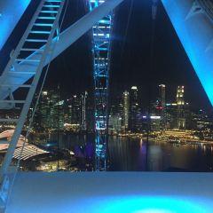 싱가포르 플라이어 여행 사진