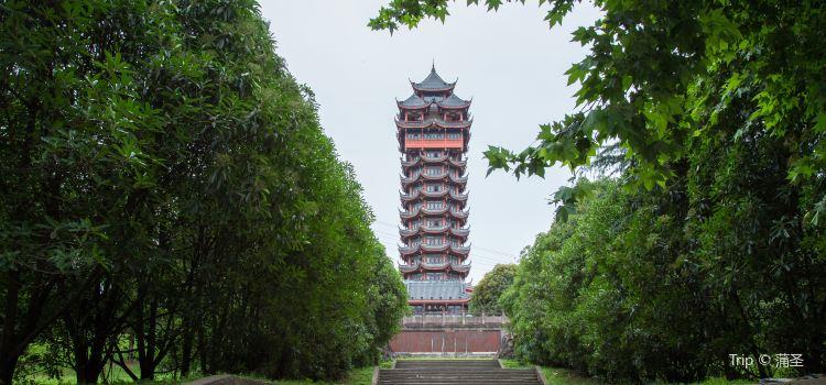 탑자산 공원1