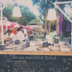Cicada Market User Photo