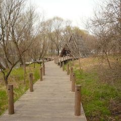 펑황다오 생태관광지 여행 사진
