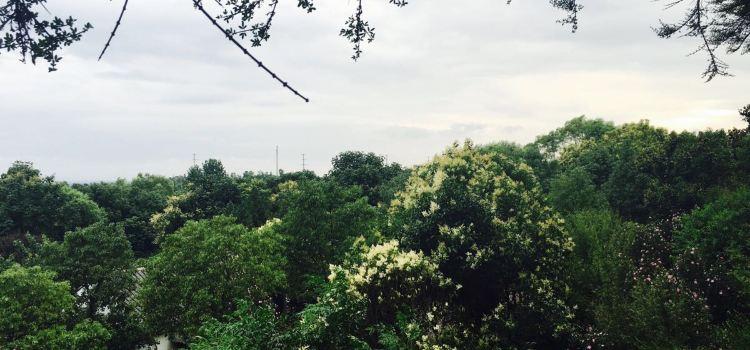 禾泉農莊1