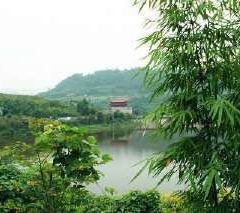 金龍湖用戶圖片
