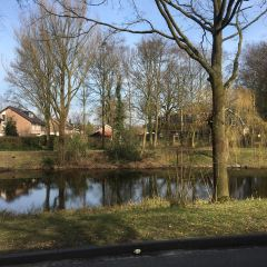 Nuenen User Photo