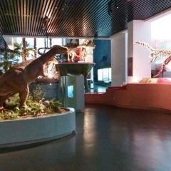 윈난성 박물관 여행 사진