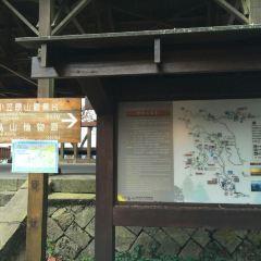 Zhushan Station 여행 사진