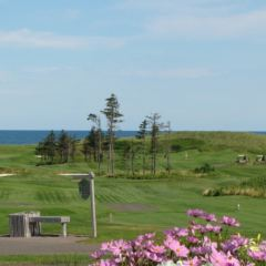 The Links at Crowbush Cove Golf Course User Photo