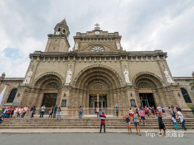 마닐라 대성당