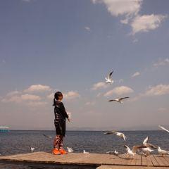 Boxi Bay User Photo