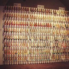 菲拉格慕博物館用戶圖片