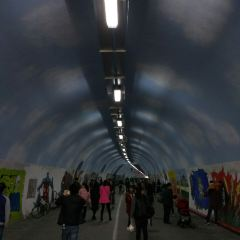 Furong Tunnel User Photo