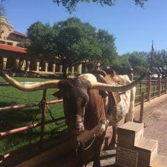 Fort Worth Stockyards Visitor Center User Photo