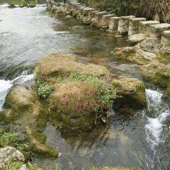 花溪公園用戶圖片