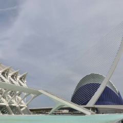 City of Arts and Sciences User Photo