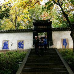 Cloud Rock Leaning Pagoda (Yunyan Ta) User Photo