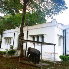 House of Wonders User Photo