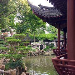 豫園用戶圖片