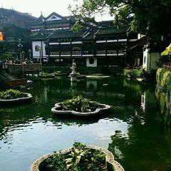 City God Temple of Shanghai User Photo