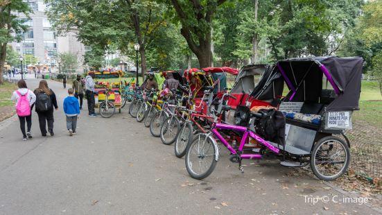 中央公園三輪車遊