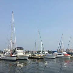 維多利亞內港用戶圖片