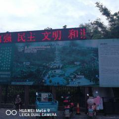 宜興竹林漂流用戶圖片