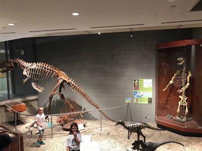 Earth Sciences Museum