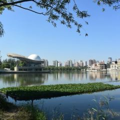 Chaoyang Park User Photo