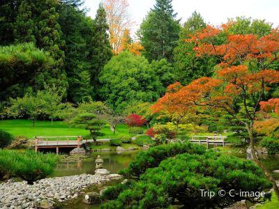 華盛頓植物園