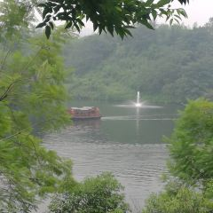 Chongqing Garden Expo Park User Photo
