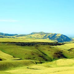 南山牧場用戶圖片