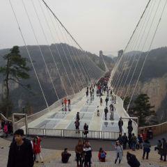 張家界大峡谷のユーザー投稿写真