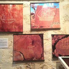 Western Australian Museum-Perth User Photo