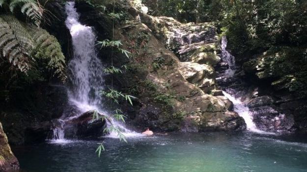 Bach Ma National Park2