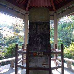 Shuangfeng Chayun Scenic Resort User Photo