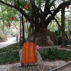 구이린시산관광지 여행 사진