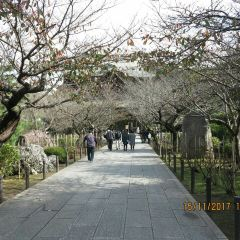 Genjiyama Park User Photo