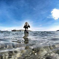 圓灘島用戶圖片