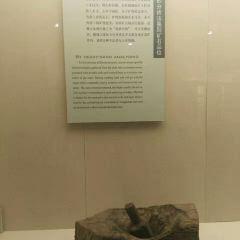 黃石市博物館用戶圖片