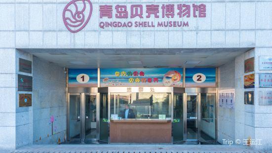 조개박물관