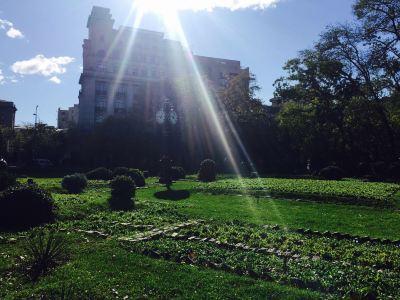 Cismigiu Gardens