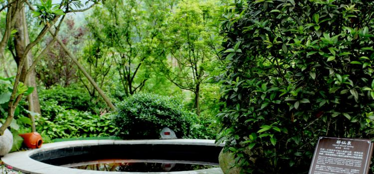天展名人溫泉度假酒店溫泉