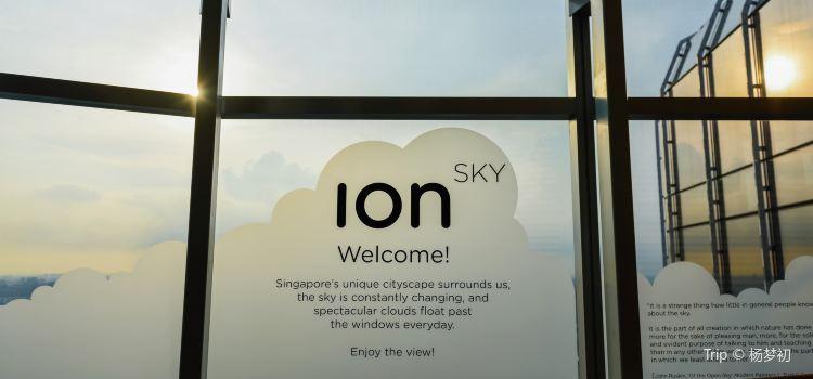ION Sky1