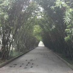 왕장루 여행 사진