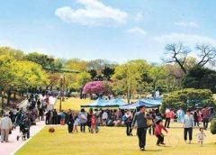 두류공원 여행 사진