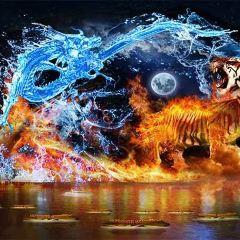 《尋夢龍虎山》實景演出用戶圖片